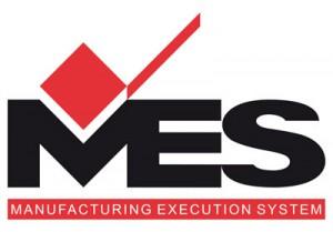 mes_2012_web